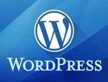 2019年WordPress CMS怎么做SEO?